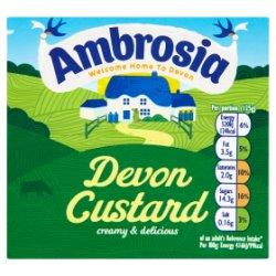 Ambrosia Custard Carton 500g